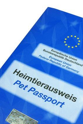 EU Heimtierausweis Husky