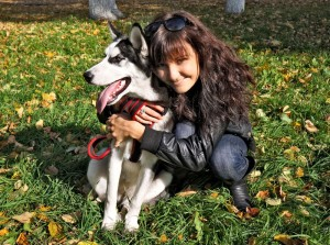 Tipps für die Husky Erziehung