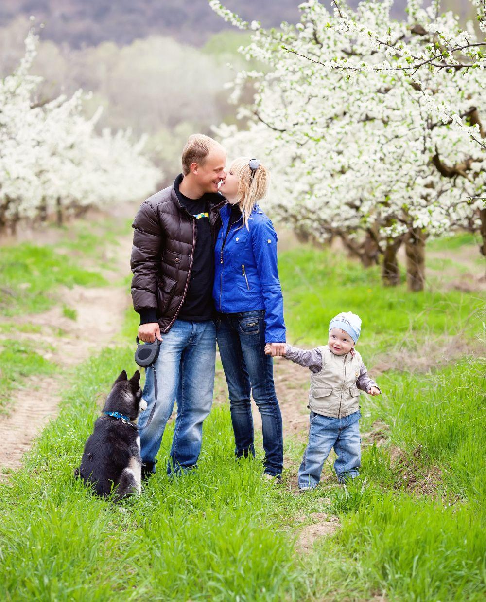 Der Husky liebt das Zusammensein mit der Familie.