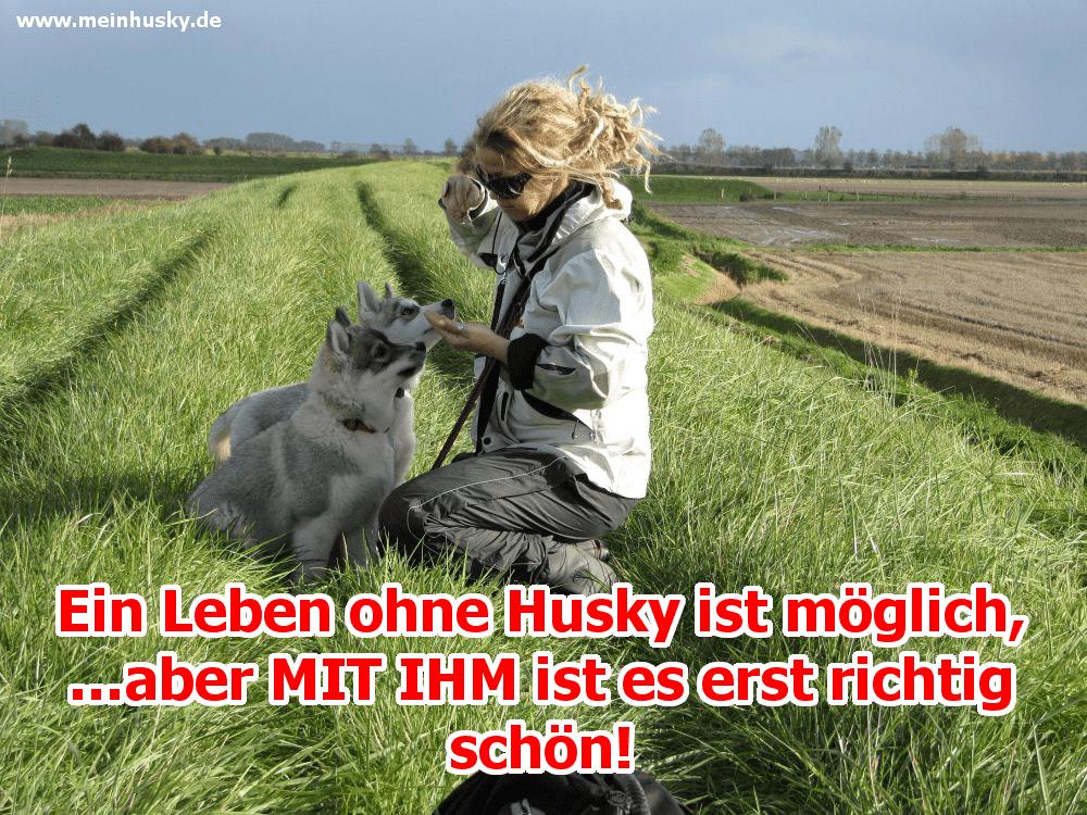 Eine Frau streichelt sie Husky